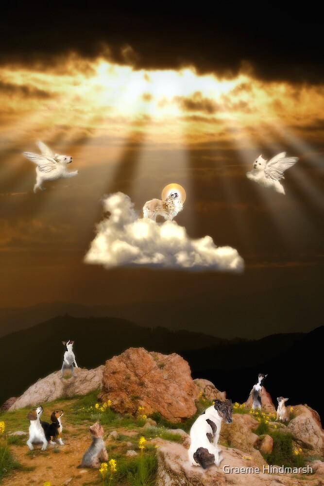 The Assumption II by Graeme Hindmarsh