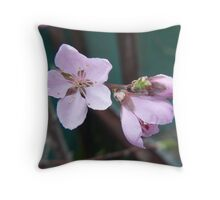 Peach blossom Throw Pillow