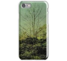 Nature Scene Grunge Vintage Style Photo iPhone Case/Skin