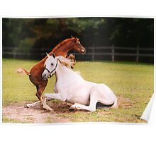 Scared of the Thunderstorm - Arabian Horses Poster