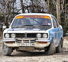 Armstrong Massey Wolds Historic Rally 2010 #2 by Nick Barker