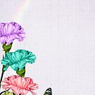 Colorful Carnations by Maria Dryfhout