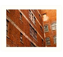 Nineteen Windows and a Door Art Print