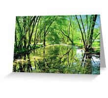 Reflections of a Summer Day  Greeting Card