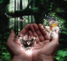 Fairies by Graeme Hindmarsh
