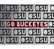 Ohio State University Photographic Print