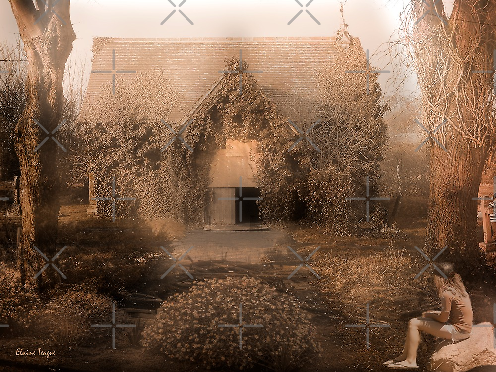 Vacant Possession by Elaine Teague