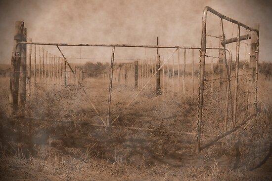 farm gate by Samantha  Dormehl