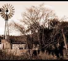 lonely windmill. by Samantha  Dormehl