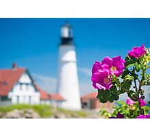 Wilded Roses at Portland Head Lighthouse  Photographic Print