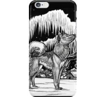 Northern Light - 2002 iPhone Case/Skin