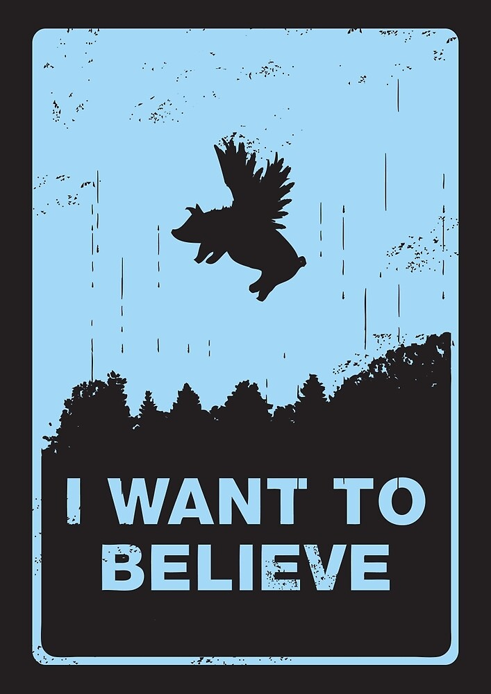 I want to believe by Budi Kwan