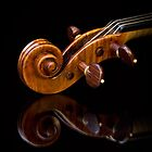 Stradivarius Scroll Reflected by Endre