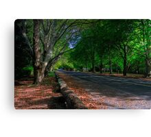 Up the Road Canvas Print