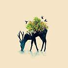 Watering - a life into itself by Budi Kwan