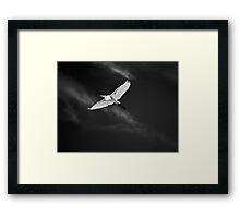 White Flight Framed Print