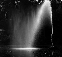 Fountain by Robert Thornton