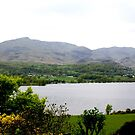Coniston Water from Brantwood ii by BronReid