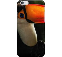 Toucan No. 6 of Iguazu iPhone Case/Skin