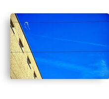 White on Wire Canvas Print