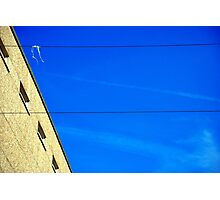 White on Wire Photographic Print