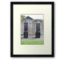 Historic Water Pumps Framed Print