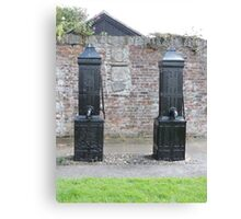 Historic Water Pumps Canvas Print