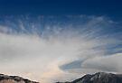Cloud Fan by Jan  Tribe