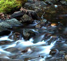 Slow Water- Stevens Creek by aswan