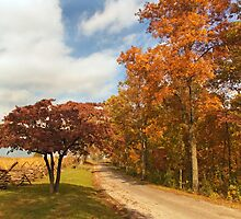 Country Road by Mick Burkey