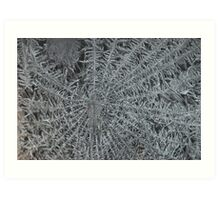 Icicles in Winter Art Print