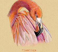 Flamingo Bird by Revelle Taillon