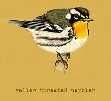 Yellow Throated Warbler by Revelle Taillon