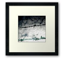 Barbed II Framed Print