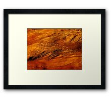 Nature's painting Framed Print