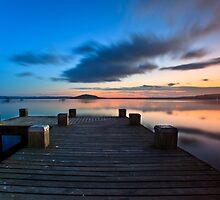 Lake Rotorua, NZ by Suellen Cook