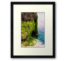 Sigmund the Sea Monster Framed Print