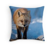 The Den Throw Pillow