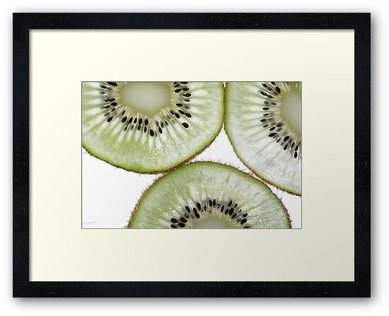 kiwifruit by Clare Colins
