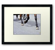 A Perfect Trot Framed Print
