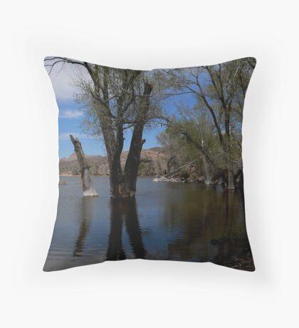 Pahranagat National Wildlife Refuge Throw Pillow