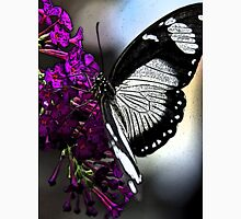 Butterfly Tshirt Womens Fitted T-Shirt