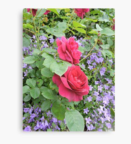 Fuschia Lilac Smile Canvas Print