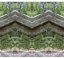 Mirrored Rocks Photographic Print