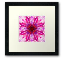 Lotus Mirror Abstract Framed Print