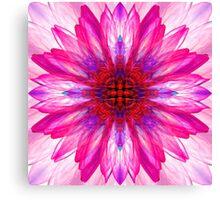 Lotus Mirror Abstract Canvas Print