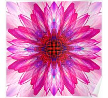 Lotus Mirror Abstract Poster