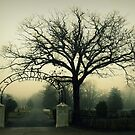 St. Andrews Cemetery by Kristina Gale