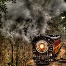 Texas State Railroad by Terence Russell