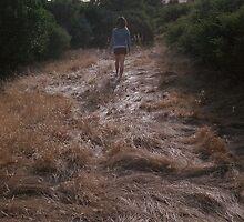 grass by pegasusflight